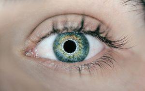 Der «AlertnessScanner» erkennt über eine schnelle Analyse der Pupillen den Energielevel der Beschäftigten. Foto: unsplash