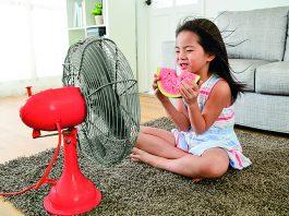 Gebäudekühlung: Wärmepumpe statt Klimaanlage. Foto: zvg