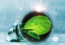 Die Bundesverwaltung und öffentliche Unternehmen haben ihre Energieeffizienz im Rahmen der Initiative Energie-Vorbild in den vergangenen Jahren kontinuierlich verbessert. Foto: Pixabay